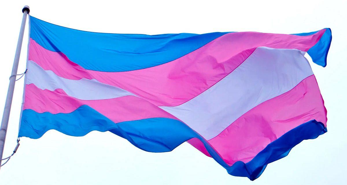 La Ley Trans y el Partido. (Parte 1)